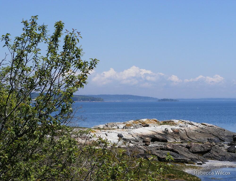 Blue Hill Maine by Rebecca Brann