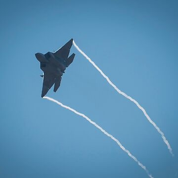 F-22 Raptor fly-by by stevenpam
