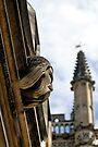 Bearded gargoyle, Magdalen College, Oxford, England by David Carton