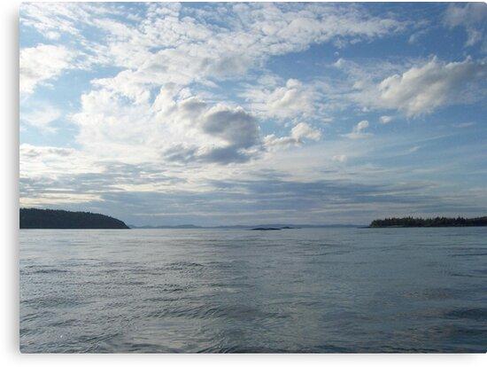 Ocean View by Martha Medford