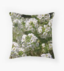 For the Love of White Throw Pillow