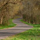 The Road Less Traveled by Charles Adams