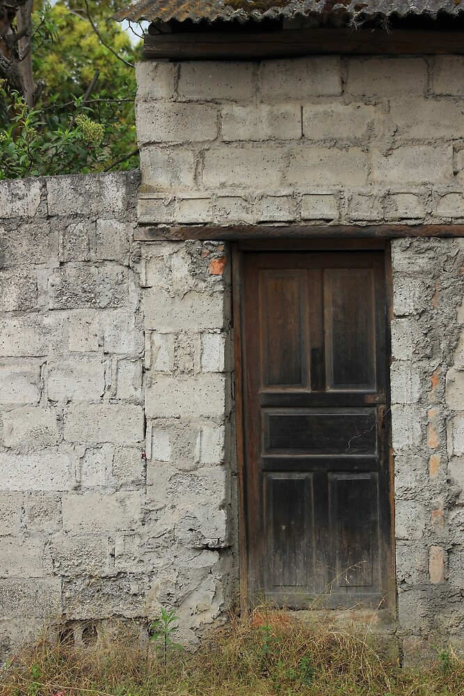 Wood Door in a Concrete Wall by rhamm
