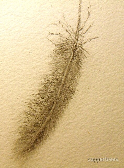Drawing Day   Feather in the air by coppertrees