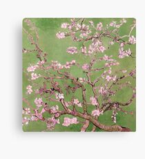 "Van Gogh's ""Almond blossoms"" with green background Canvas Print"