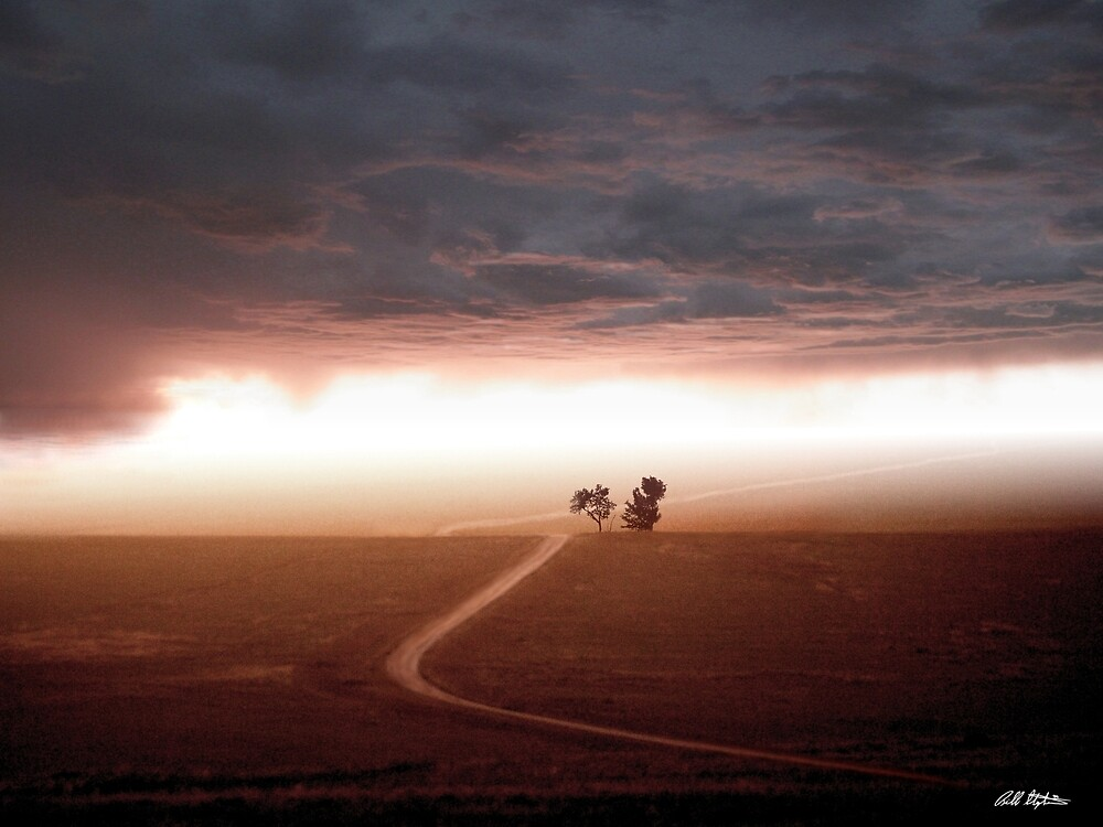 The Road Less Traveled by Bill Stephens