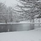 Winter Wonderland by Grinch/R. Pross