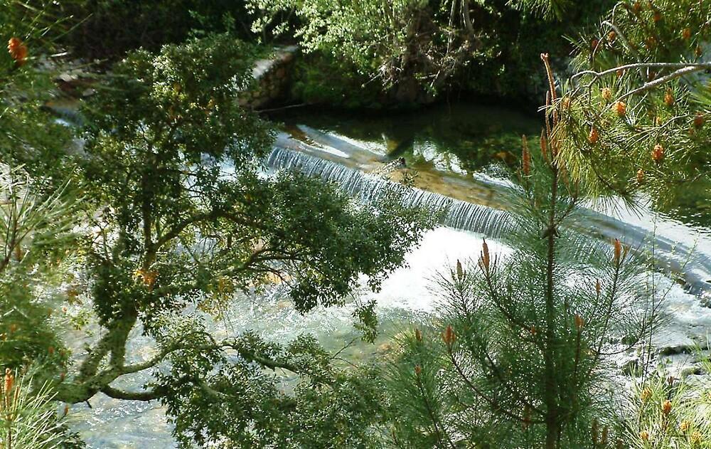 River Mata by moix