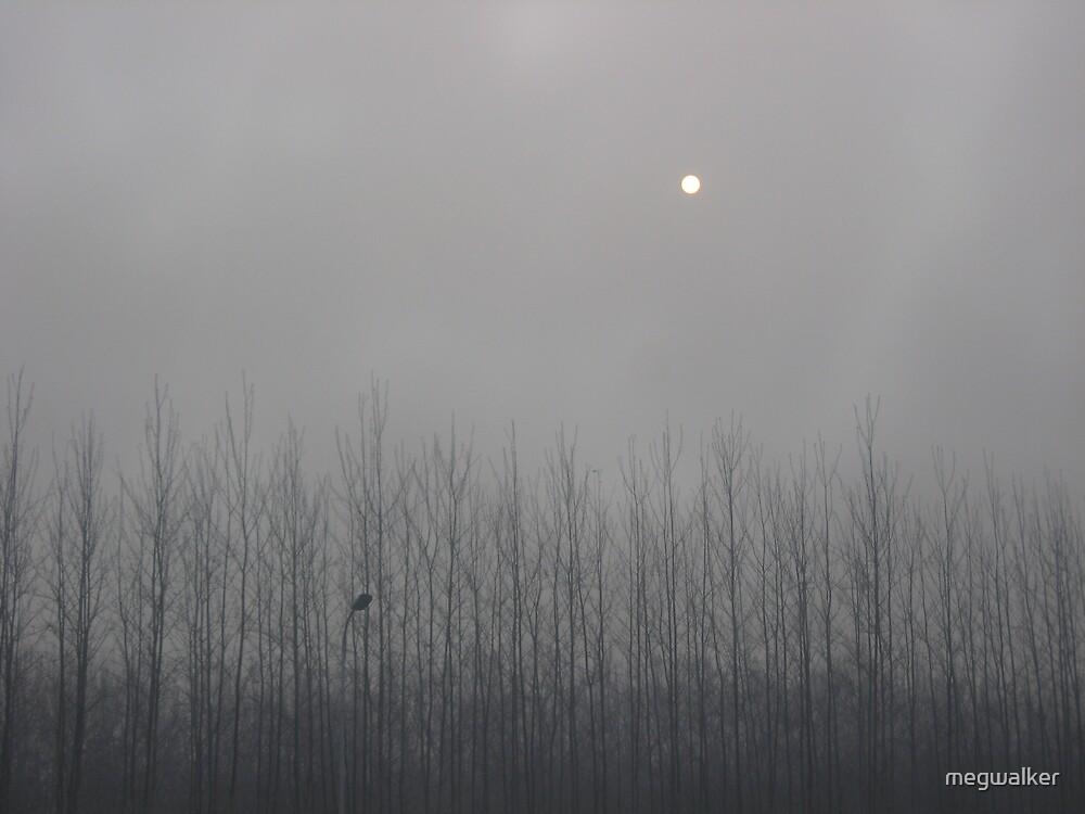 Dawn in Beijing by megwalker