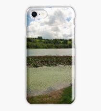 Irish Landscape - Blarney iPhone Case/Skin
