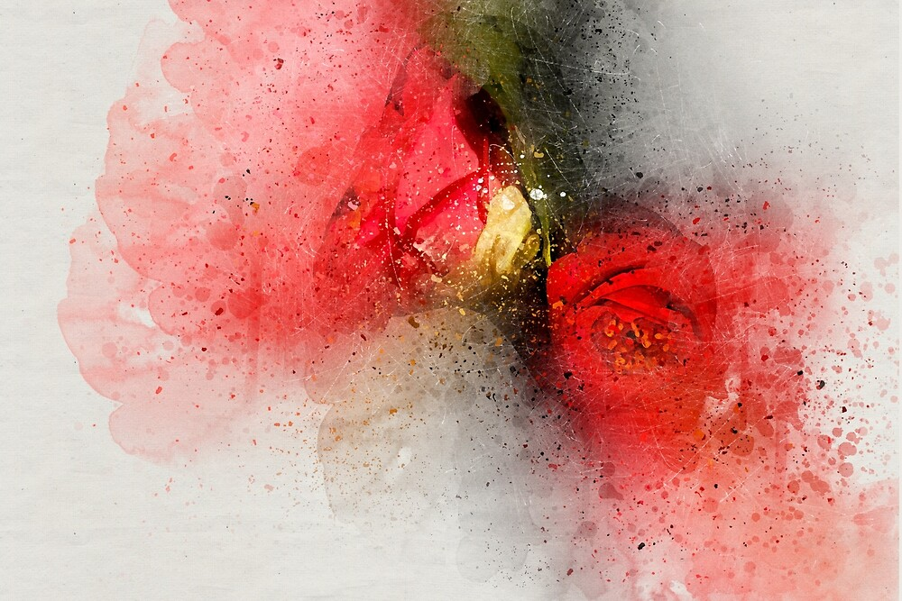 Camellia Burst by Kay Brewer