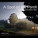 A Spot on the Porch by Wayne King