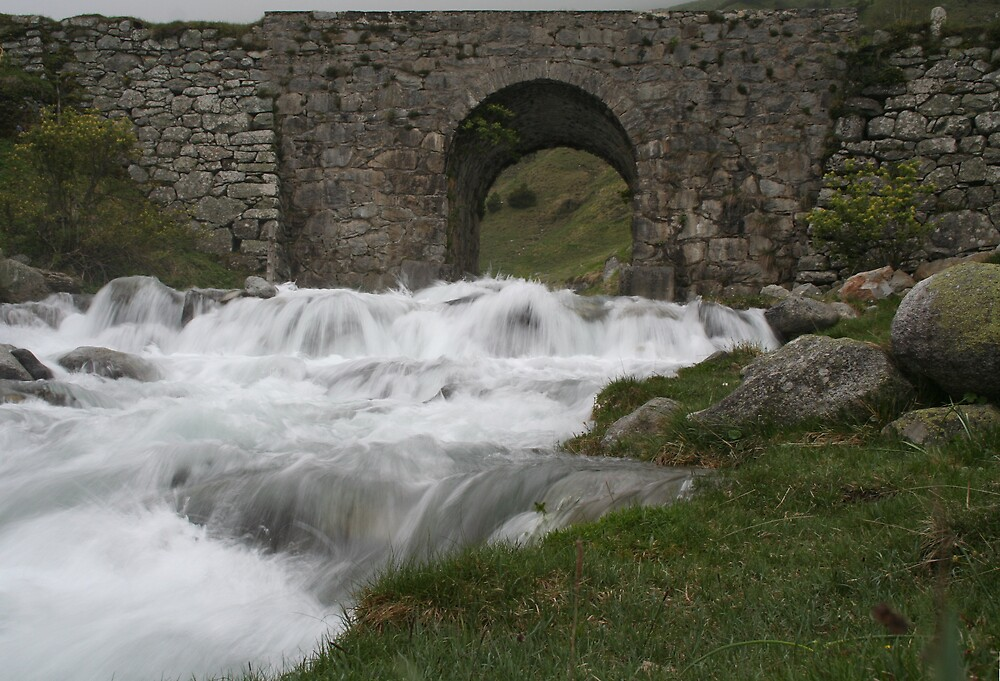 Pyrenees Stream by Simon Zybek