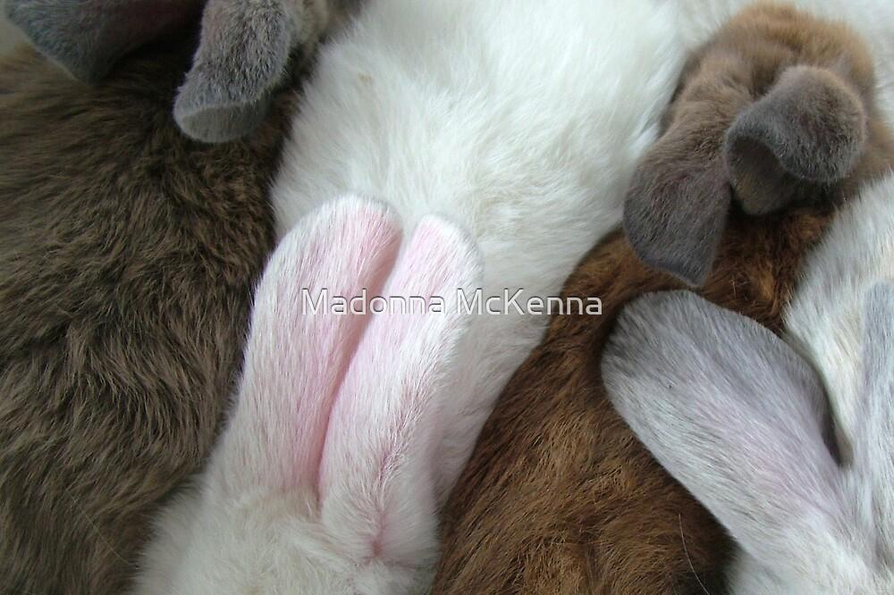 """Bunny Ears"" by Madonna McKenna"