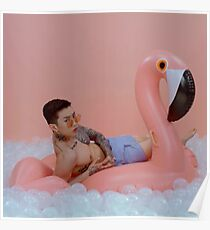 Jay Park pink blow up flamingo charli xcx SQUARE! Poster
