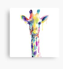 Rainbow Giraffe Canvas Print
