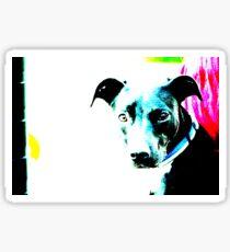 Blue Contrast Dog Sticker