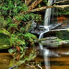 Middle Somersby Falls, Central Coast, New South Wales by Erik Schlogl