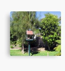 Bird House. Canvas Print