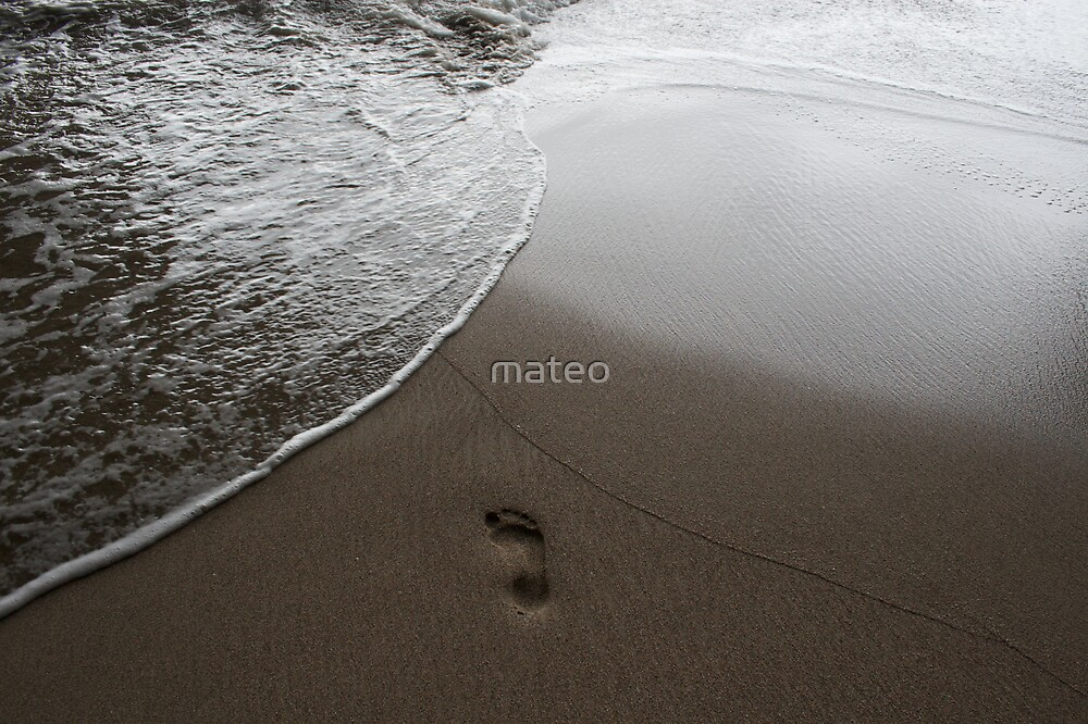 into the sea by mateo