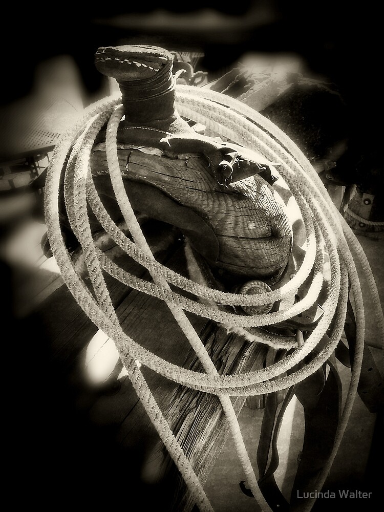 Rope ~ Saddle by Lucinda Walter