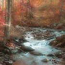 Autumn Splendid by Donna Sherwood