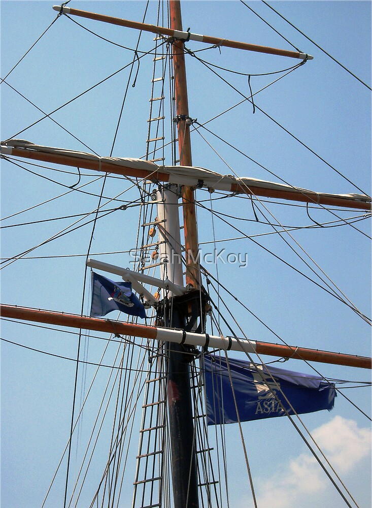 Tallship Mast by Sarah McKoy