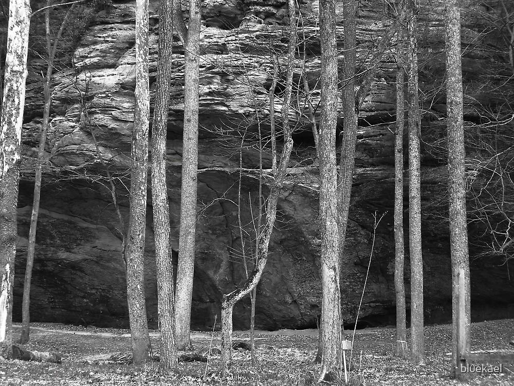 trees by bluekael