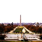 Autumn At Capitol Hill Overlooking the Washington Monument  by Argetlam