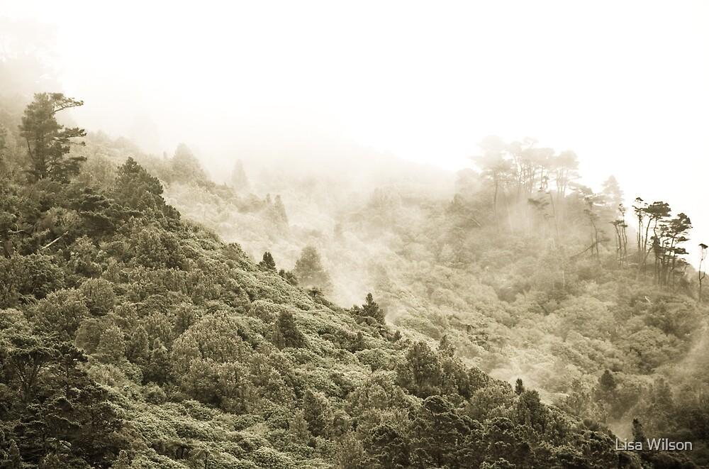 Mist Rising by Lisa Wilson