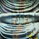 Bouddha by nguyen