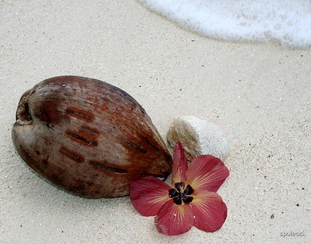 Beautiful Rarotonga by spuleosi