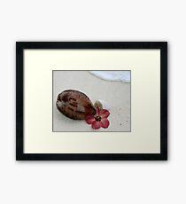 Beautiful Rarotonga Framed Print