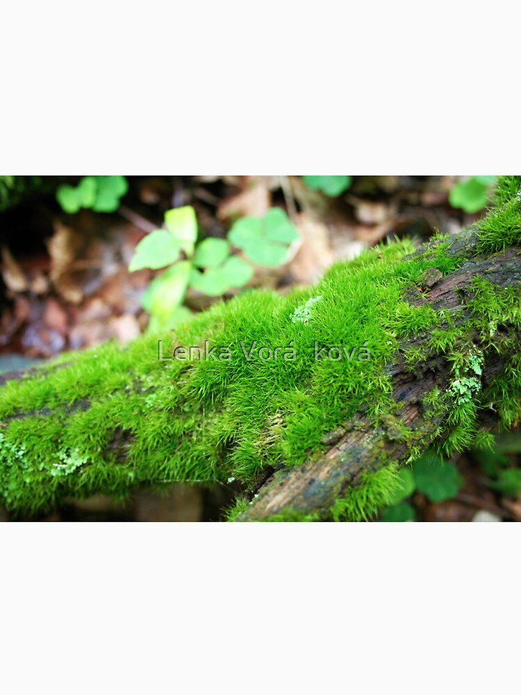Moss pillows by Trin4ever