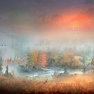 Exodus Of The Sun by Igor Zenin