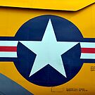 Nahaufnahme der Flugzeuginsignien auf einem altmodischen Warbird. von StocktrekImages