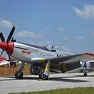 Nordamerikanischer Mustang F-51D. von StocktrekImages