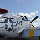 Ein nordamerikanischer F-51D Mustang. von StocktrekImages