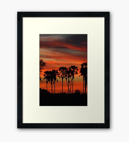 Sunset and Real Fan Palms Framed Print