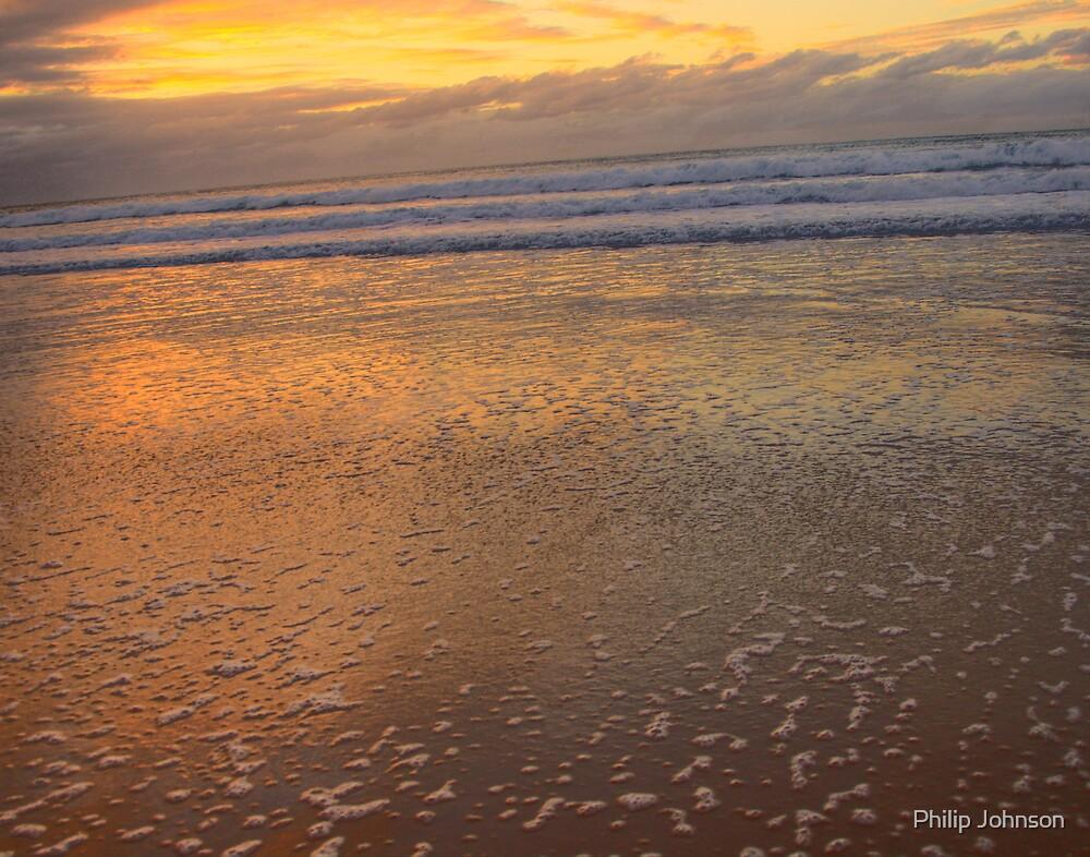 Natures Paintbrush - Palm Beach - Sydney Beaches, Sydney Australia by Philip Johnson