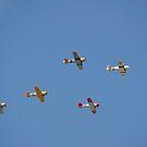 Eine Gruppe von restaurierten Vintage Warbirds fliegen in Formation. von StocktrekImages