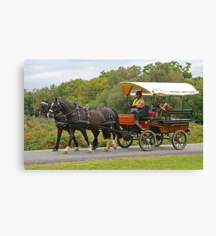 Covered Wagon, Burley Lawn Canvas Print
