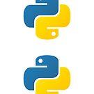 Python by estruyf