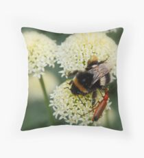 Bee & Soldier Beetle Throw Pillow