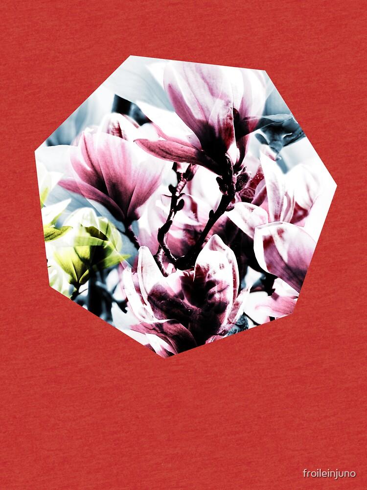 Magnolia 01 von froileinjuno