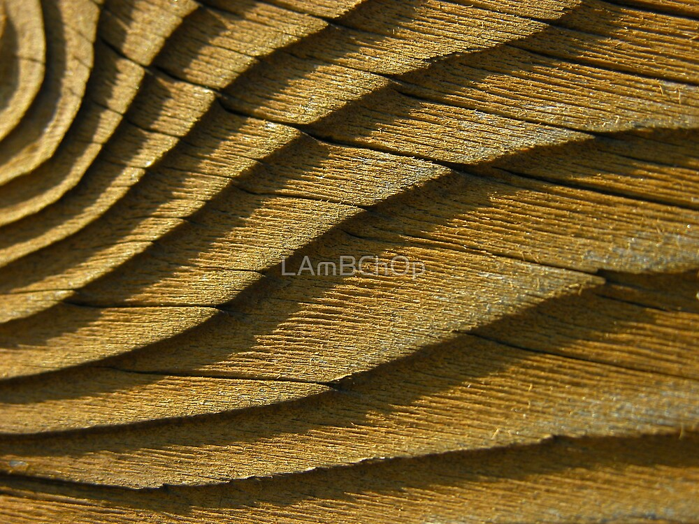 Wavey Wood by LAmBChOp
