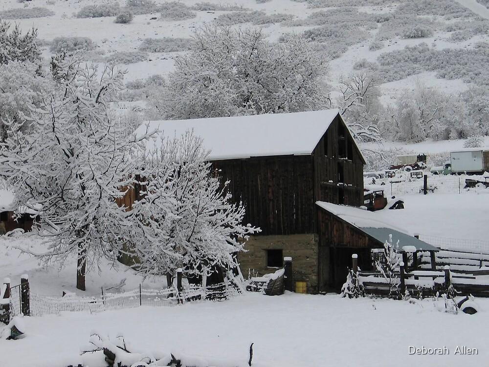 Snow Covered Barn  by Deborah  Allen