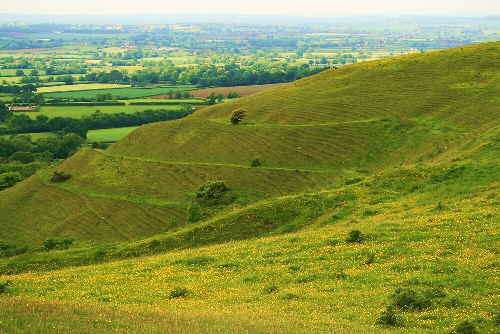 Hambledon Hill by RedHillDigital
