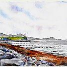 Irish Lighthouse by Eva Crawford