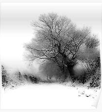 Snowy Lane Poster